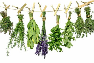 herbs for smoothie