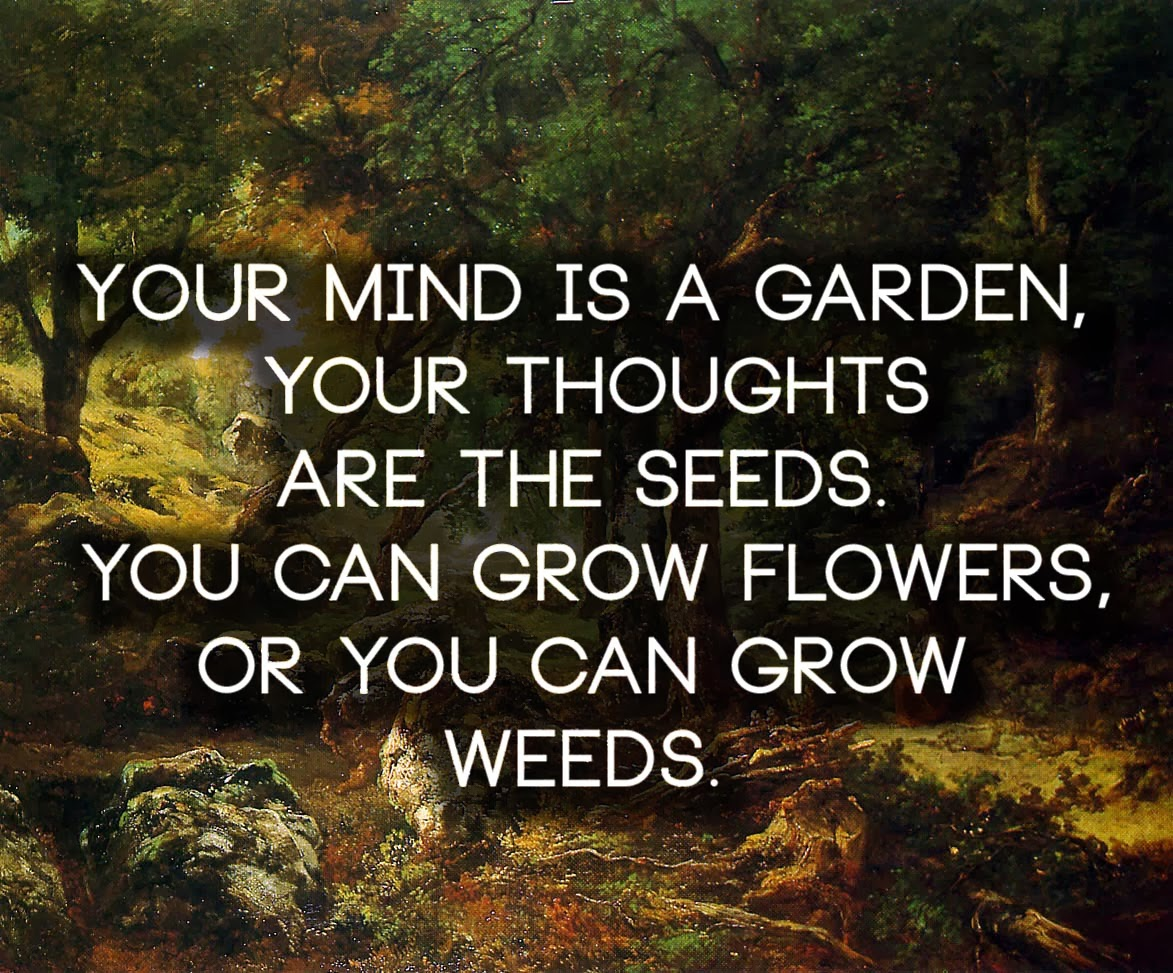 Quotes About Planting Seeds For Life Magic Seeds Smoothie Seeds With Hidden Benefits